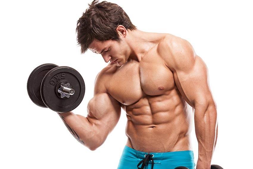 LIPO P.A – Ganho de massa muscular que vão além da estética.
