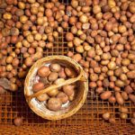 Slendesta – Proteína da batata que promove a saciedade