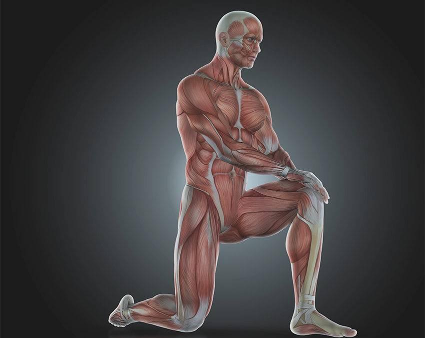 LIFESOLIC – Tratamento saudável na atrofia muscular.